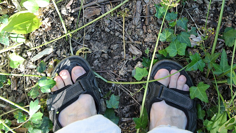 Feet on sandals on lush forest ground.