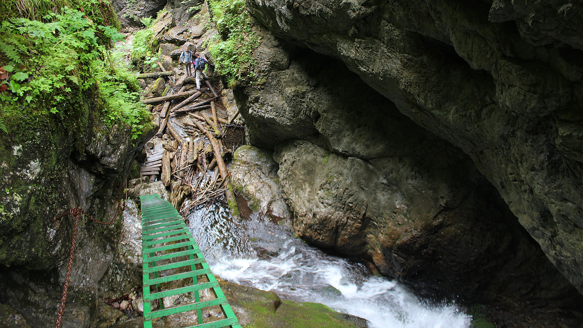 Steep green ladder above a waterfall in Veľký Sokol gorge.